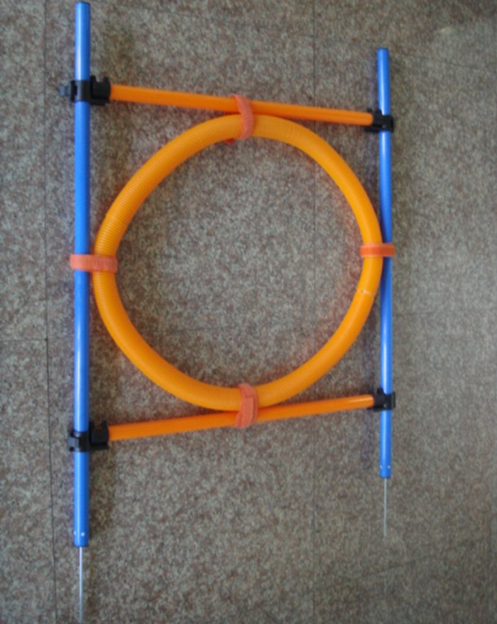 Dog Agility Training Equipment - RING JUMP
