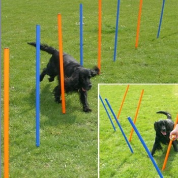 Dog Agility Training Equipment - WEAVE POLES